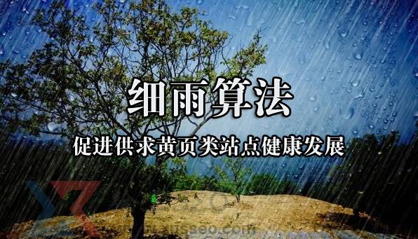 网奇seo【解析细雨算法】