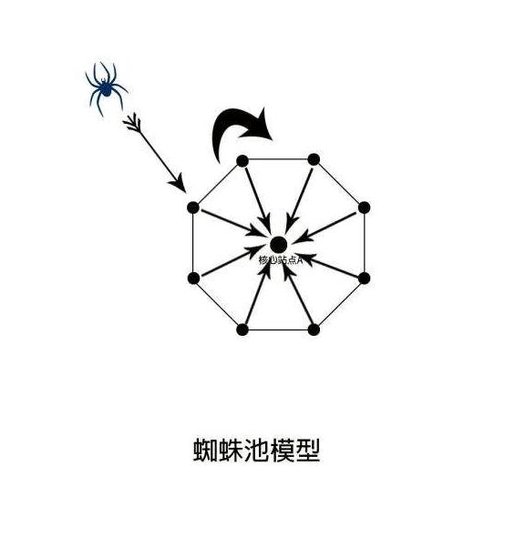重庆seo徐三对蜘蛛池一些浅谈