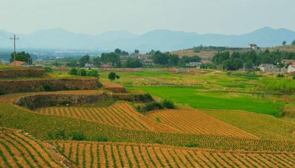 马云直言未来赚钱机会在农村,4大机遇要把握好