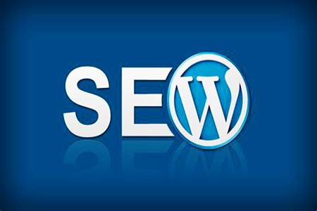 【刷网站快速排名】_WordPress主题模板,选择注意事项!