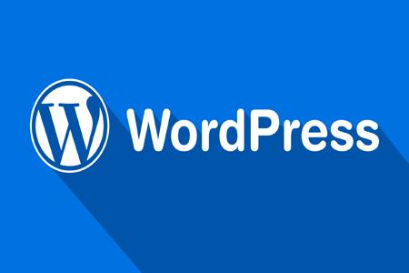【刷快速排名的】_WordPress 建站教程,如何快速建站?