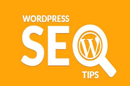 【网站快速优化排名方案】_WordPress 博客,为什么在百度没排名?