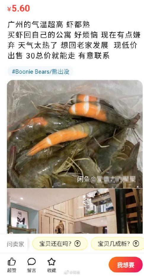 闲鱼如何设置为已卖出(闲鱼上卖房子什么情况)