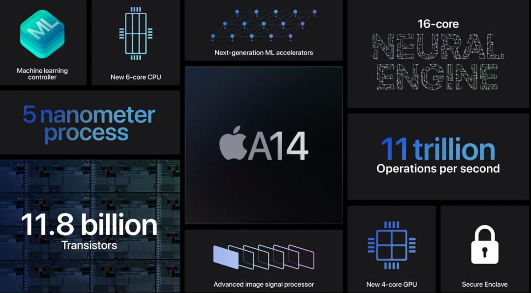苹果变软了是什么原因(软苹果)