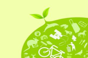 低碳环保项目有哪些(推荐这几个低碳环保项目)