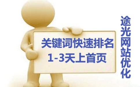seo菜鸟论坛企业网站优化是靠首页吗?