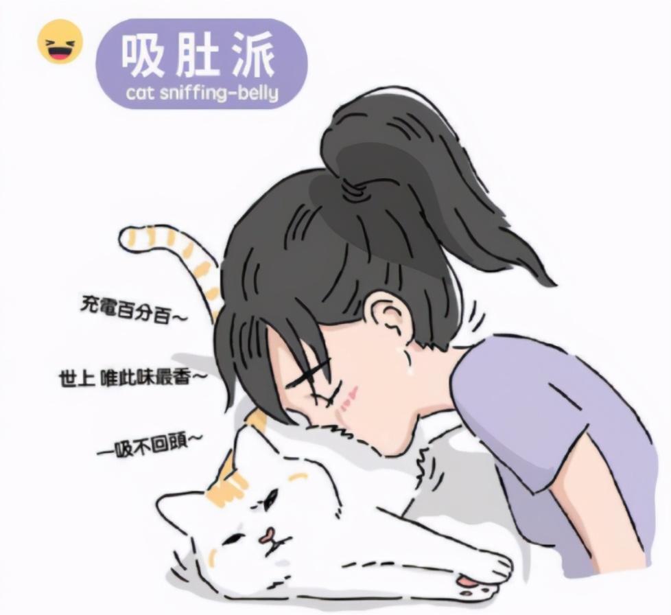 吸猫是啥意思是什么(吸猫虽好可不要贪杯哦)