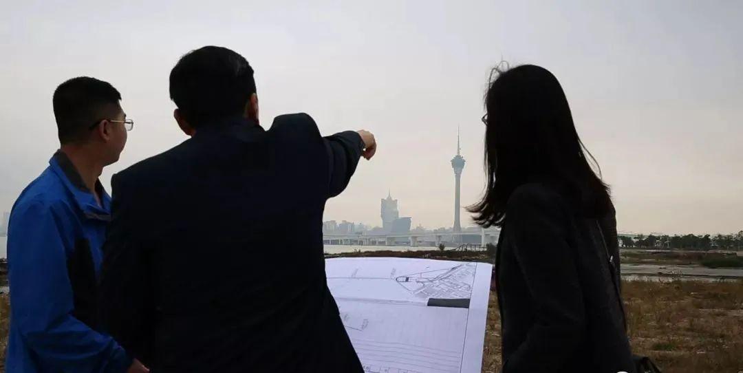 港珠澳大桥设计师名单(港珠澳大桥专家组名单)