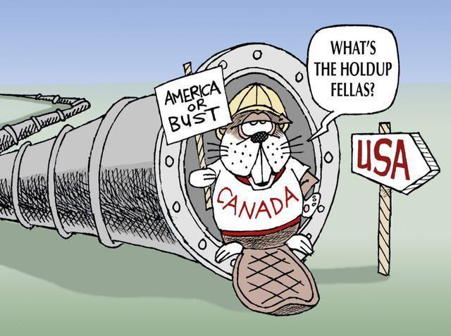 美国禁止N95口罩出口加拿大