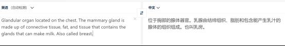 哪种翻译软件最好用(自动翻译工具排行榜)