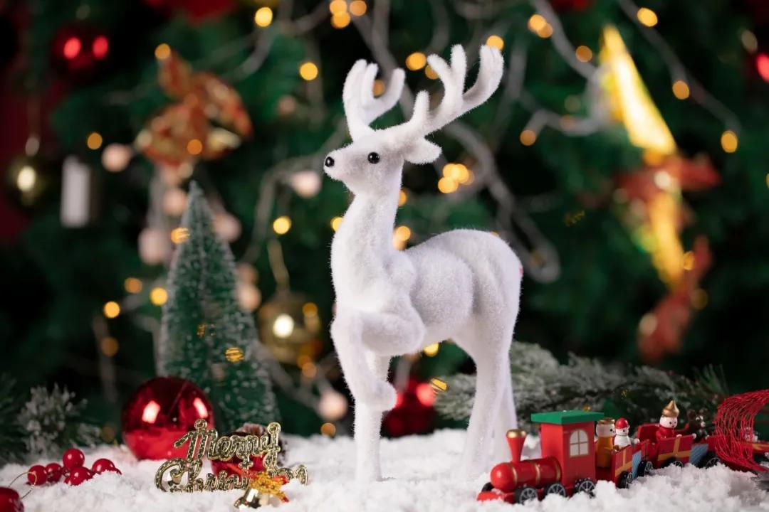 圣诞节是什么节日(圣诞节的意义)