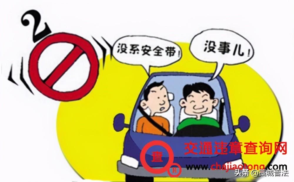 交通法规新规定2021最新(交通规则知识大全)